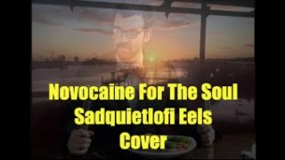 Novocaine For The Soul (Sad Quiet Lofi Eels Cover) #370