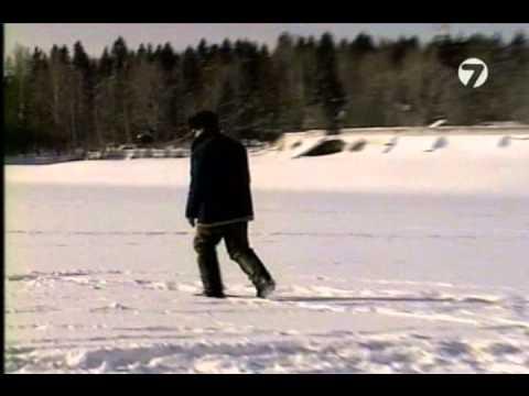 №28 Уклейка  Зима