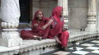 Karni Mata Hindu Temple, Deshnok Rajasthan India - Temple of the Rats width=