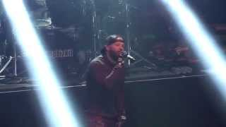 Limp Bizkit LIVE Faith / Pollution Paris, France, Bataclan 03.07.2014 FULLHD