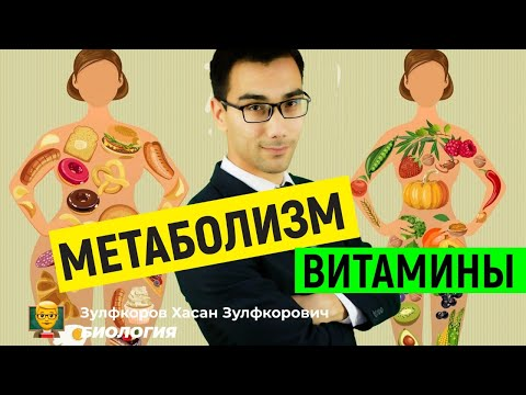 Метаболизм. Витамины. Питание