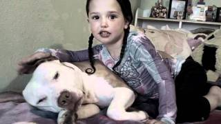 Here is the truth and proof of PitBulls, monster?