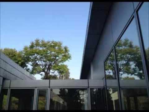 台灣欒樹,四季。 - YouTube