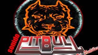 la kumbia talibana dj jackzon feat  sonido pitbull