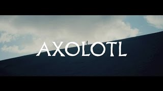 "The Veils - ""Axolotl"" (ft. El-P) (Official Music Video) 