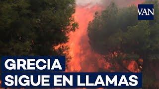 Los incendios en Grecia dejan al menos 50 muertos y centenares de heridos
