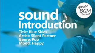 Pop [No Copyright Music] Blue Skies - Silent Partner