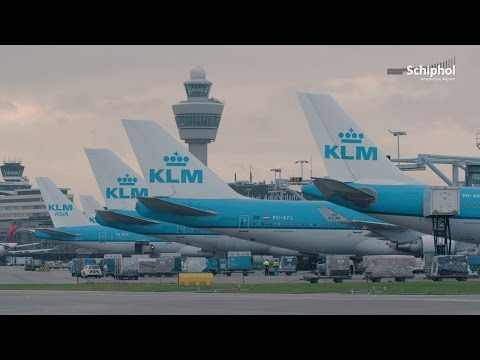 Ready Jet Set Go: Blue Monday