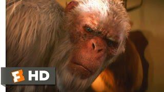 Goosebumps (1/10) Movie CLIP - The Abominable Snowman of Pasadena (2015) HD