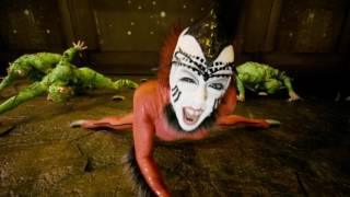 Cirque du Soleil: OVO is coming to The Schott!