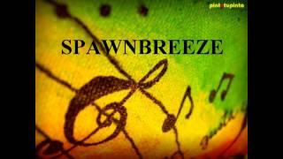 SoulAkoustik Remix spawnbreezie (Breezing vs To the riddim)