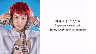 EXO - One and Only (유리어항) (eng sub + romanization + hangul) [HD]