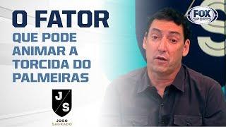 PVC: o fator que pode animar a torcida do Palmeiras contra o Grêmio