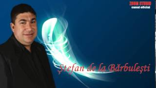 STEFAN DE LA BARBULESTI - PARFUM DE FEMEIE, ZOOM STUDIO
