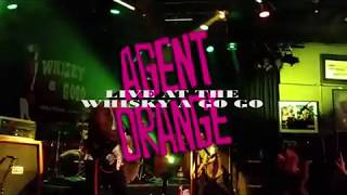 Agent Orange   The Last Good Bye - Surf Punk Rock Band