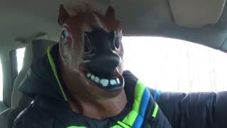 Koń który jeździ autem 3 (Zieleń - Trzemeszno)
