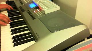 "Vangelis ""Antarctica"" live by Yamaha PSR E-413 +FLS"