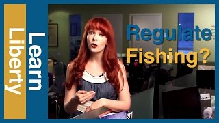 Should We Regulate Fishing? #KeepAskingWhy Episode 4 - Learn Liberty