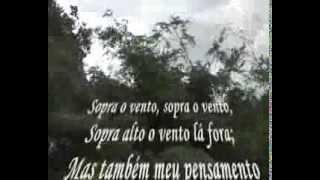 """Poema ao vento"""