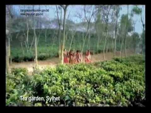 Beautiful Bangladesh -school of life