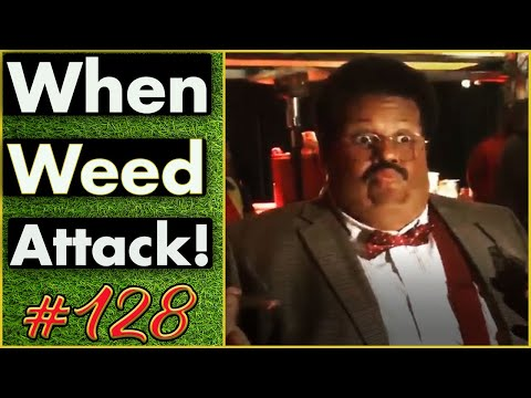 Smoking Weed / Weed Fail Compilation / WEED MEMES AND Weed Pranks! #128