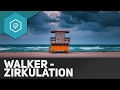 walker-zirkulation/