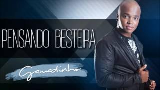 Gamadinho - Pensando Besteira (Áudio Oficial)
