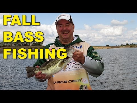 Fall Bass Fishing | Bass Fishing