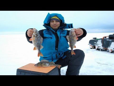 КРУПНЫЙ ОКУНЬ НА БАЛАНСИР 2020. Рыбалка в Карелии. Ловля крупного окуня зимой. Рыбалка 2020.