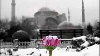 Mustafa Demirci '' Güllere Vurgunum''   YENİİ