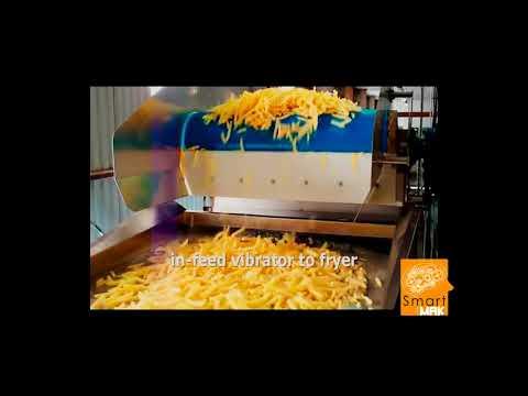 Dondurulmuş Patates Kızartması Üretim ve Dolum Hattı