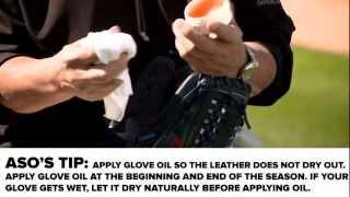 Wilson Pro-Stock Glove Conditioner