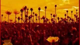 Opium - Marcy Playground