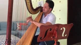 """Tommy Torres """"Perderme en ti"""" (Cover Efraín Ramos Voz y Arpa)"""