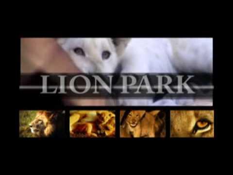 The Drakenstein Lion Park – Cape Winelands, South Africa