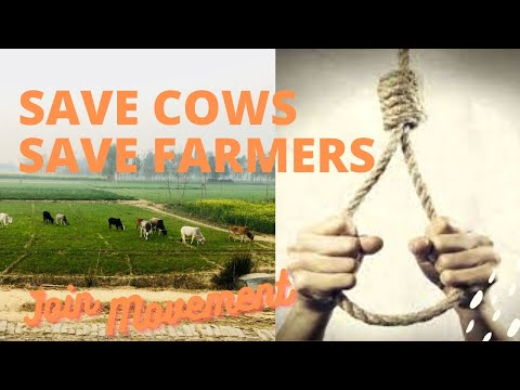 SAVE COWS, SAVE FARMERS