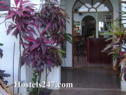 Granada Hostels Video from Hostels247.com-Dolphin Guest House