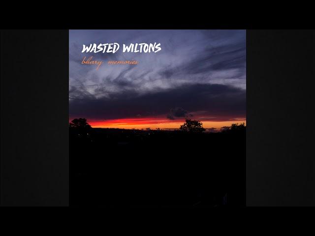 Audio oficial de la canción Poncho de Wasted Wiltons