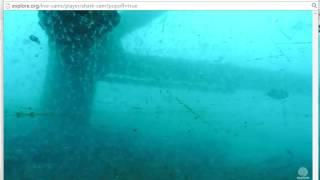 Frying Pan Tower - Shark Cam - Camera movement