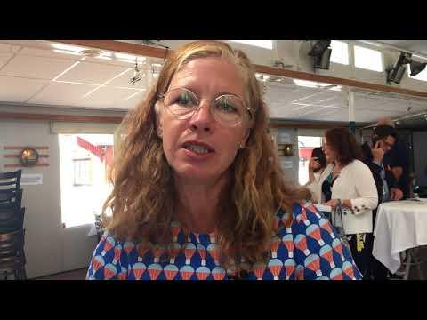 Expertlunch Almedalen 2018 - insikter Eva Schelin
