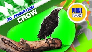 Green Screen Crow on the Tombstone - PixelBoom 3D Animations