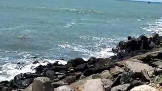 Pantai logending Ayah kebumen ja teng.