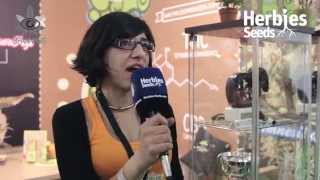 Philosopher Seeds @ Spannabis 2015 Barcelona