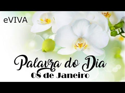 PALAVRA DE DEUS PARA HOJE 08 DE JANEIRO eVIVA MENSAGEM MOTIVACIONAL PARA REFLEXÃO DE VIDA