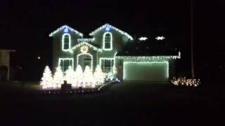 Animal Martin Garrix-7 Christmas light show. Georgetown tx