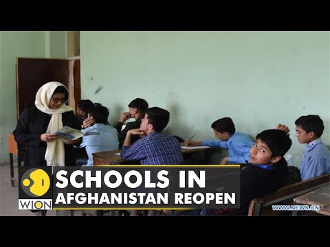 Schools reopen across Afghanistan under Taliban   Latest World English News   WION News