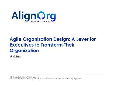 Agile Organization Design  A Lever for Executives to Transform Their Organization