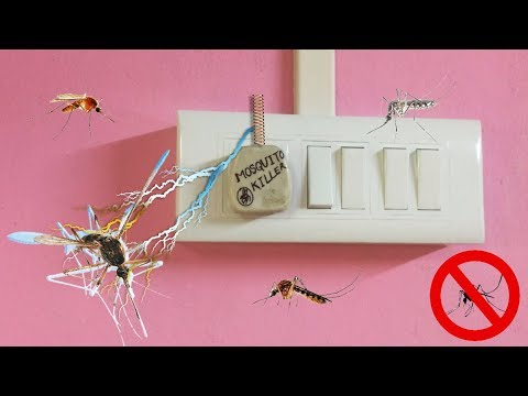 how to make mosquito killer at home in 10 minit
