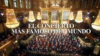 Concierto de Año Nuevo 2016