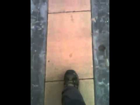 Short Footsteps & Scallap Shells